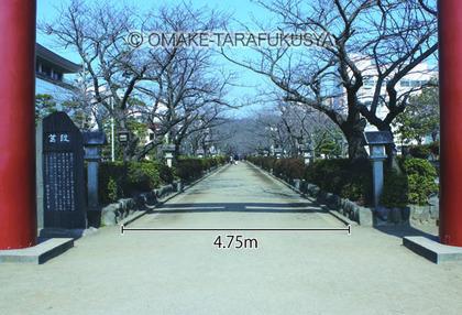 dankazura1.jpg