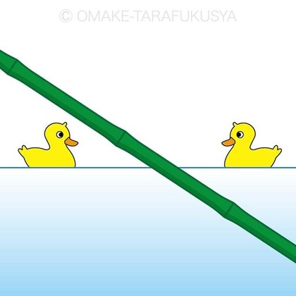 duck.jpg