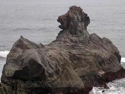 lionrock.jpg